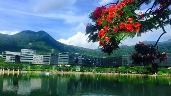 Overseas Teaching Vacancies in Shenzhen